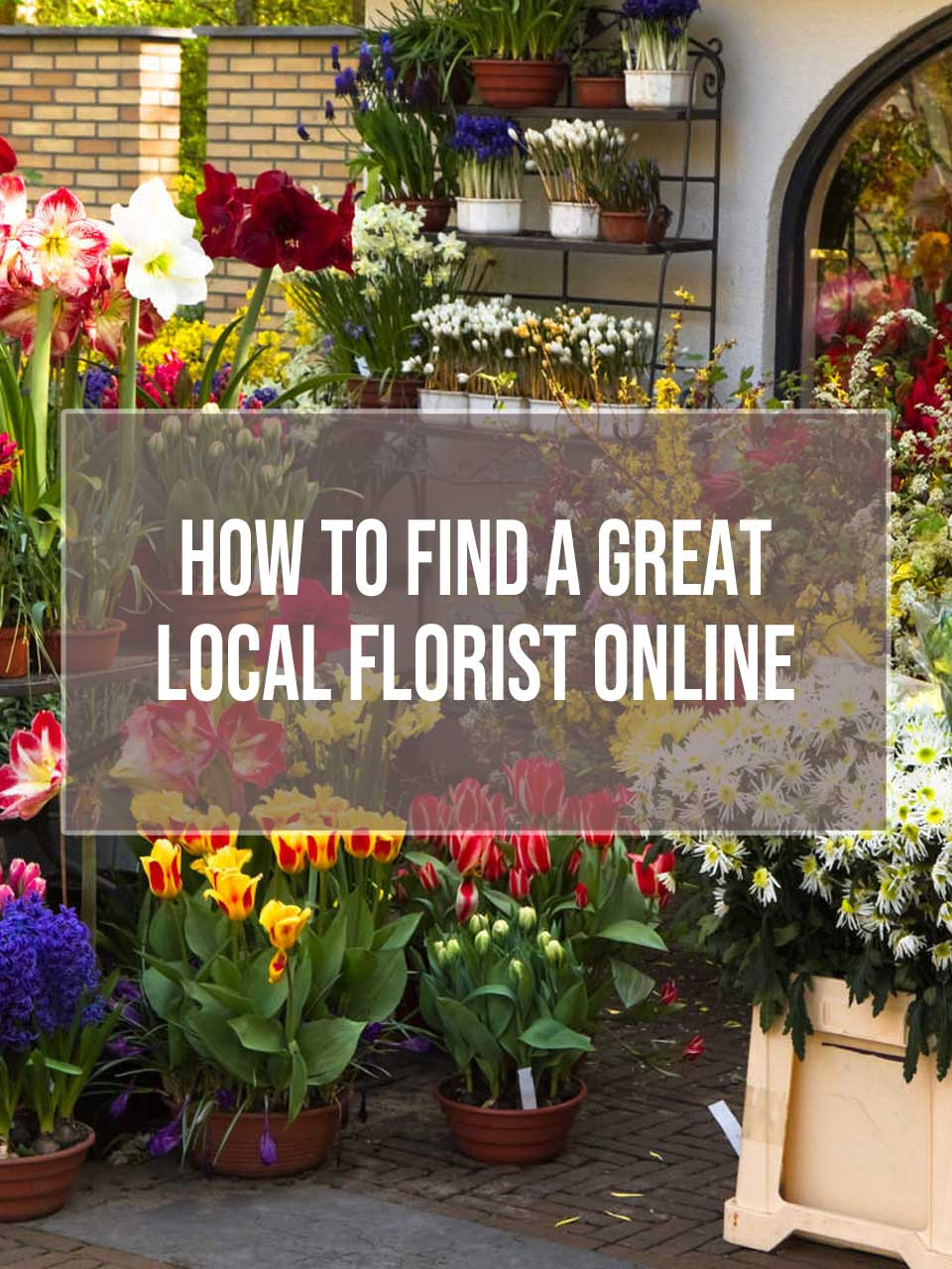 how to find a local florist