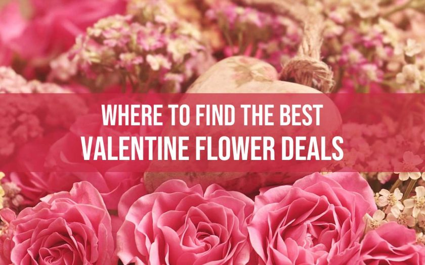 Valentine flower deals